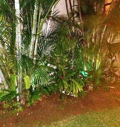 Apart Lujoso Full Amueblado en Trejos Montealegre