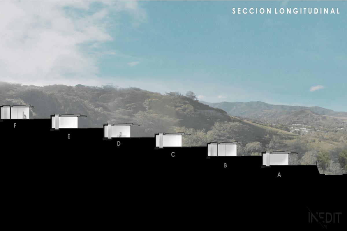 Sección Longitudinial